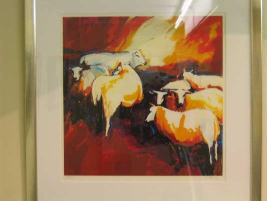 Elfring - Gerda - Koeien